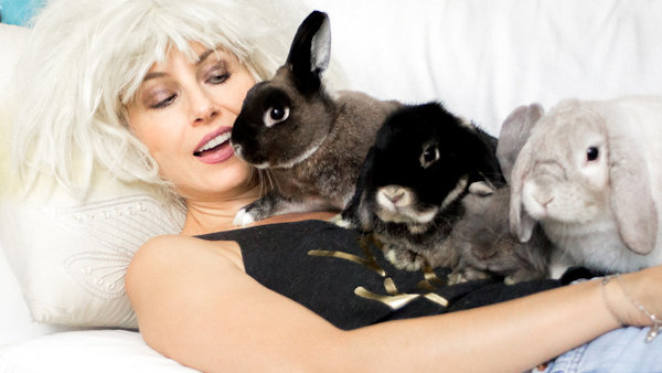 valida with bunnies
