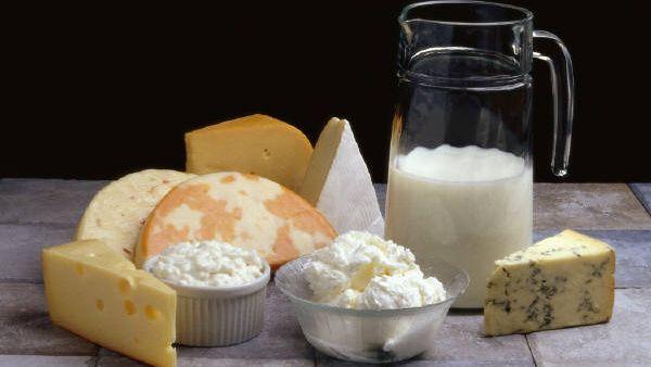 cheese and milk bluejacketdairy