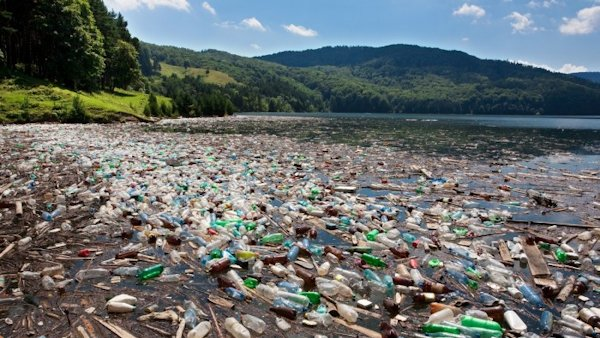Single-Use Plastic: The Ever Growing Footprint on the Environment