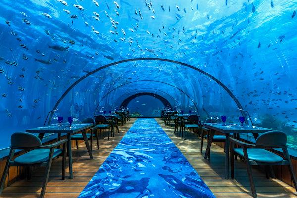 5.8 restaurant