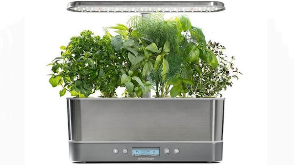 Grow Fresh Herbs & Veggies Right in Your Kitchen with AeroGarden