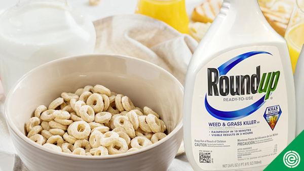Glyphosate Still Contaminates Foods Marketed to Children